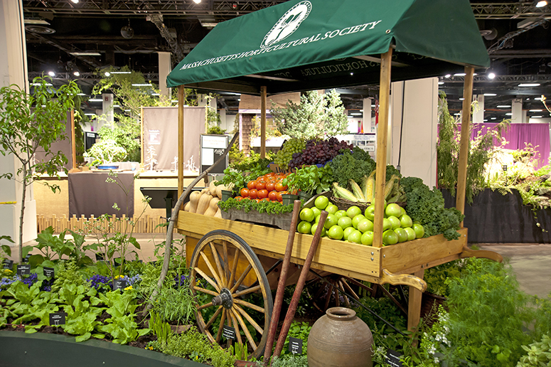 Welcome To The Boston Flower And Garden Show